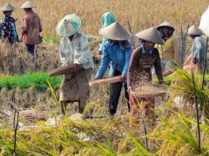 indonesia-1203250_1280_300